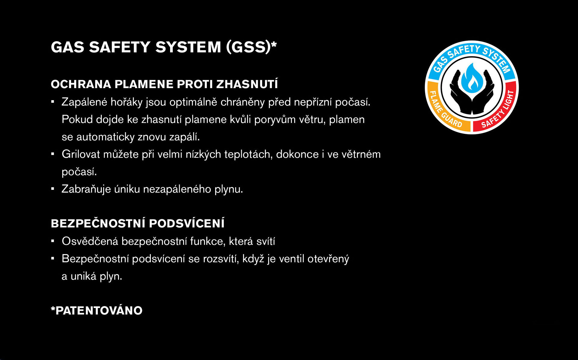GSS Gas Safety System